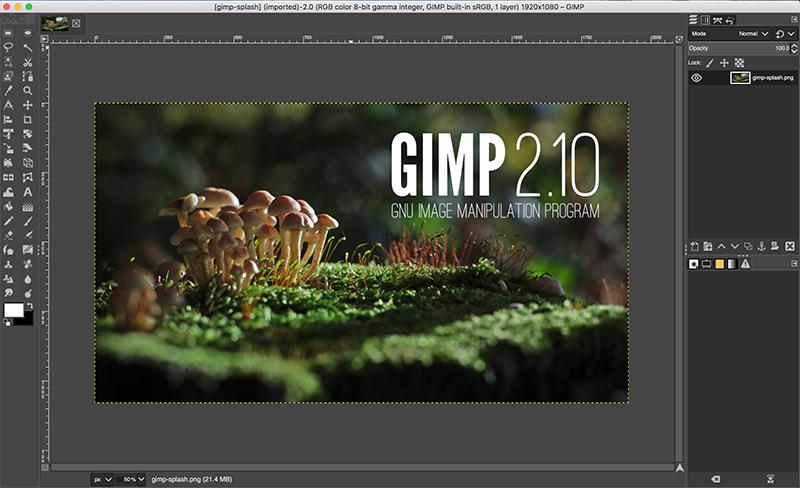 Best Photoshop Alternatives For 2020 - Digital Polo, Inc